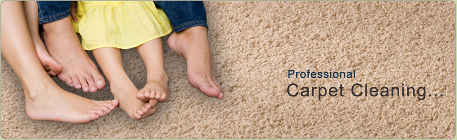 Carpet Cleaning Rochester Ny Best Rug Amp Carpet Cleaners